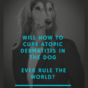 Will How To Cure Atopic Dermatitis In The Dog